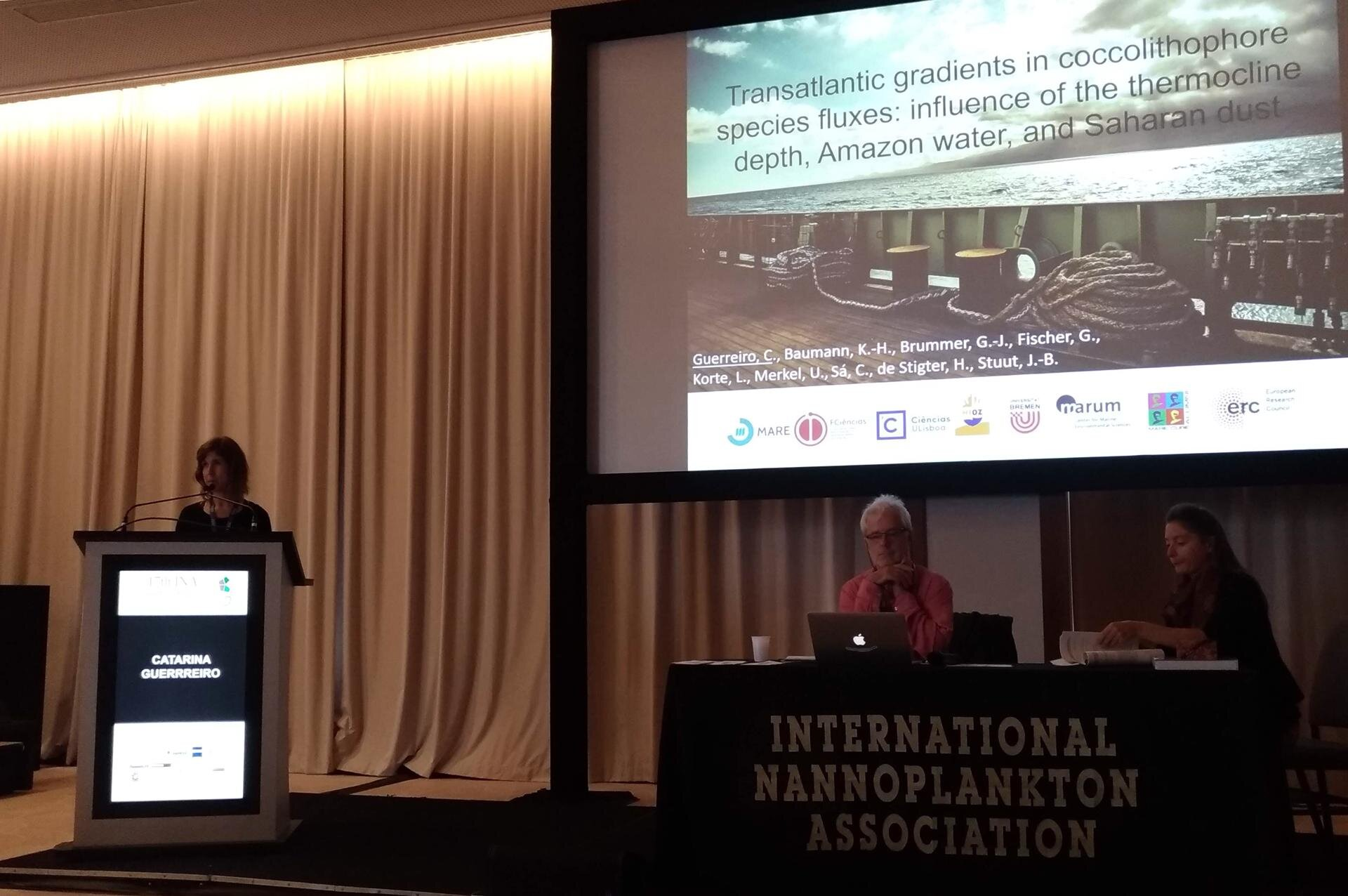 Catarina presenting her talk at INA 17.