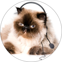 cat-on-phone1-200x200.png