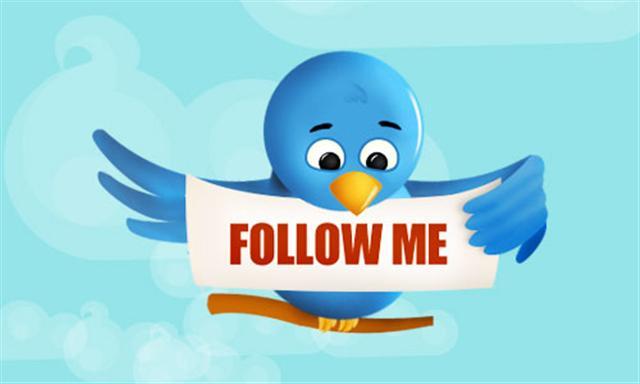 twitter_bird_follow_me.jpg