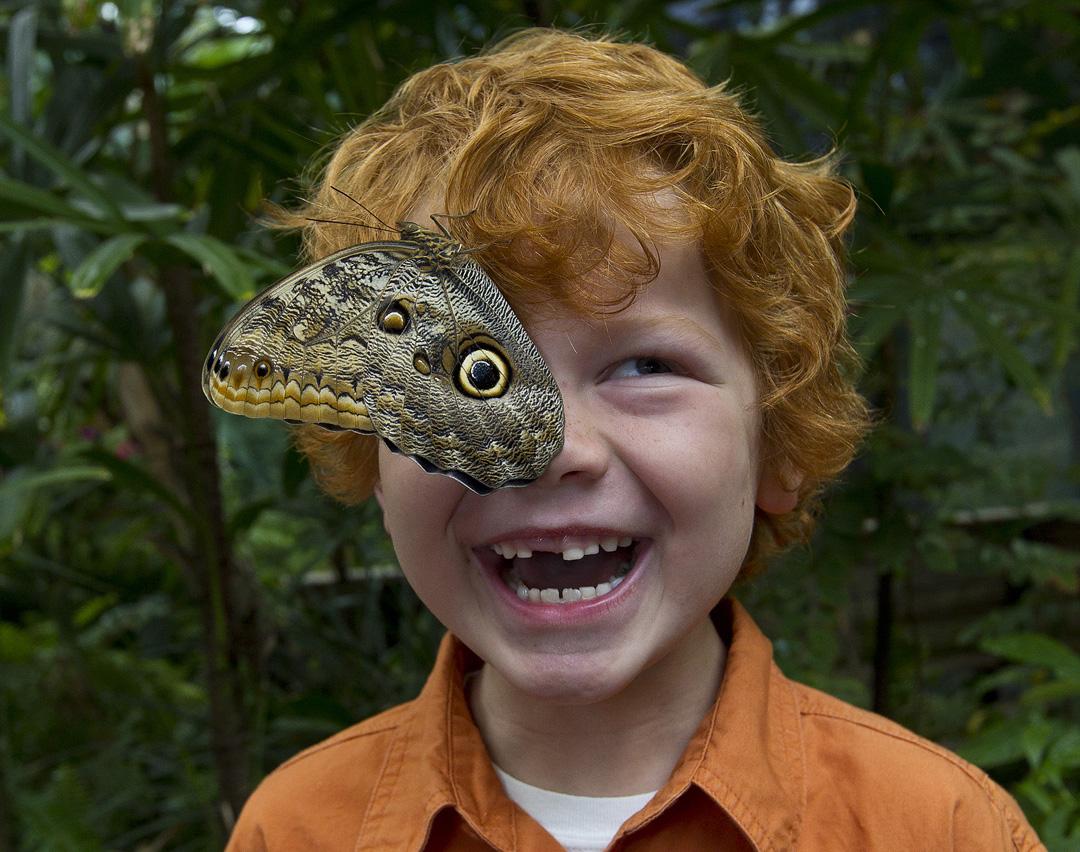 kid-joy-butterfly.jpg