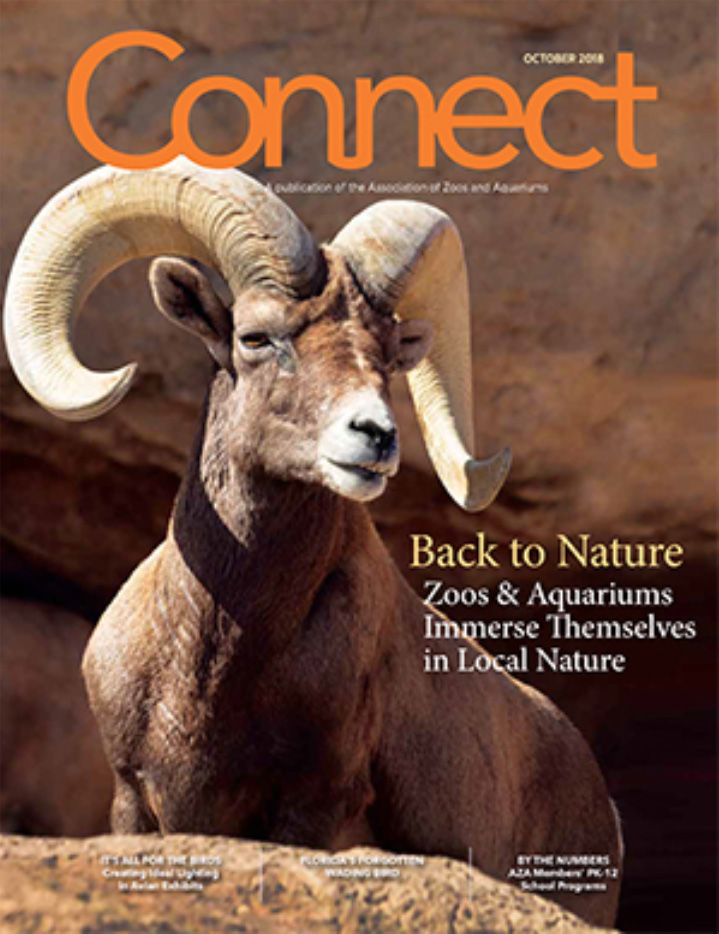 connect mag_2018.jpg