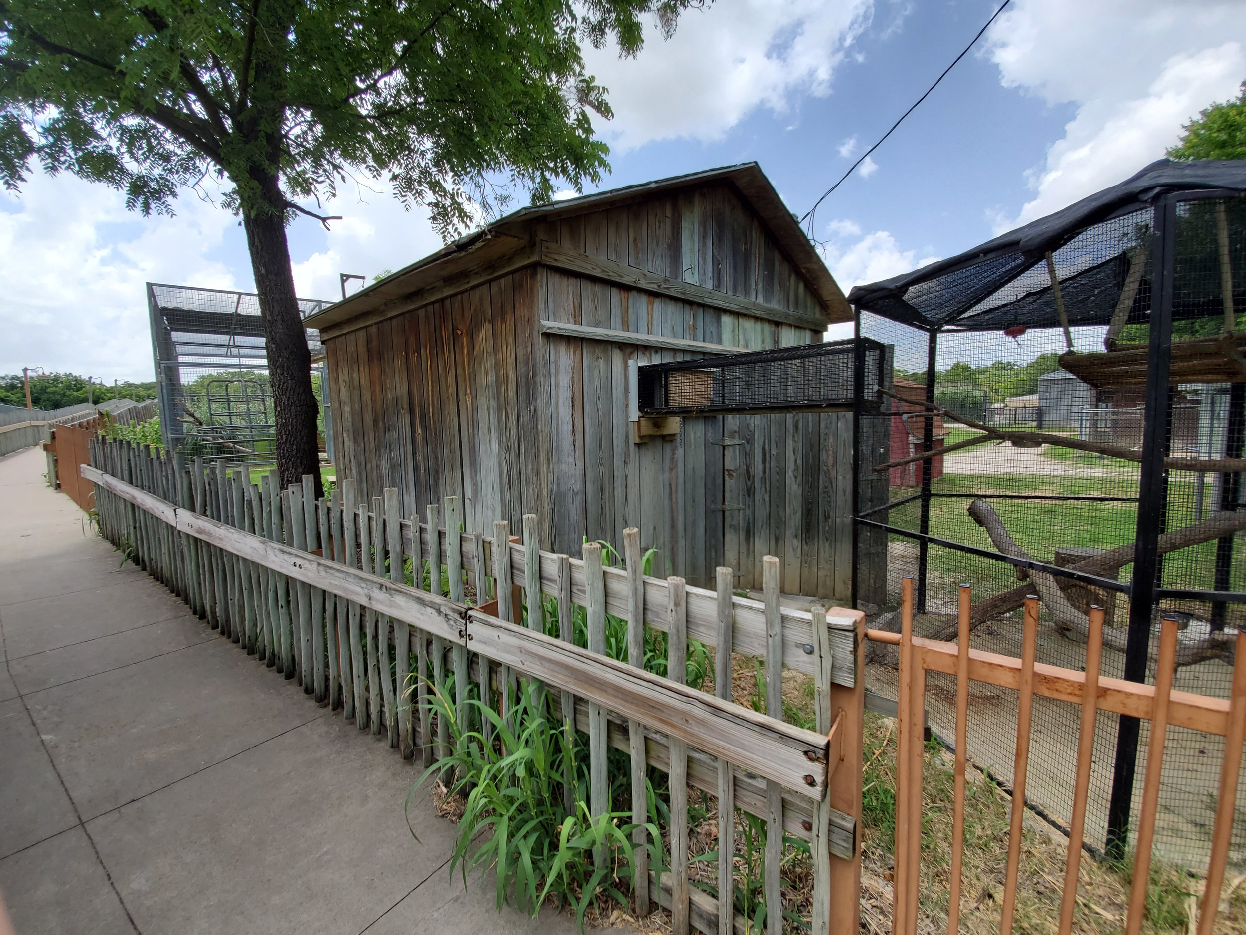 Creative reuse of old shed to create primate complex