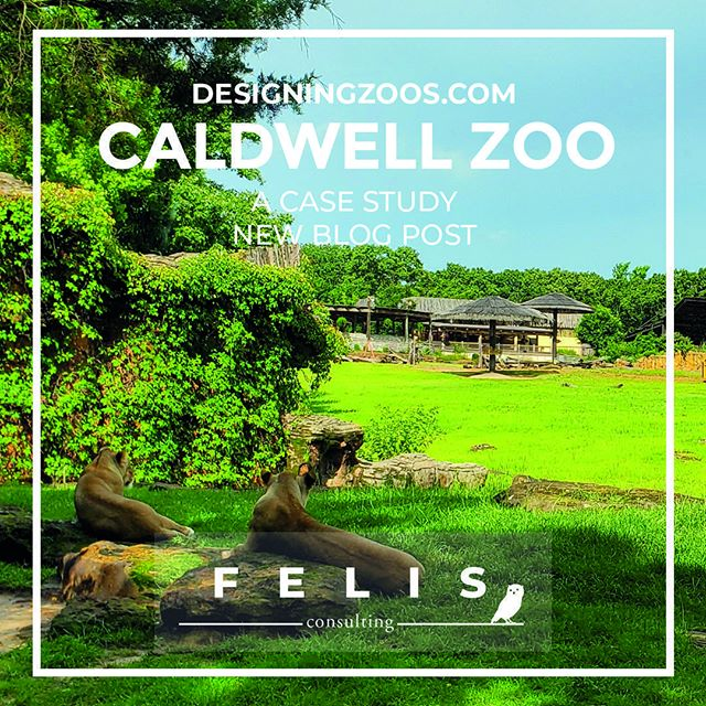 "⭐️ Brand new blog post! Case Study on Caldwell Zoo! ⭐️⠀ ⠀ ""Caldwell Zoo: A Timeless Ballad""⠀ ⠀ @caldwellzoo⠀ ⠀ 👉Read it here: 👈⠀ www.designingzoos.com"