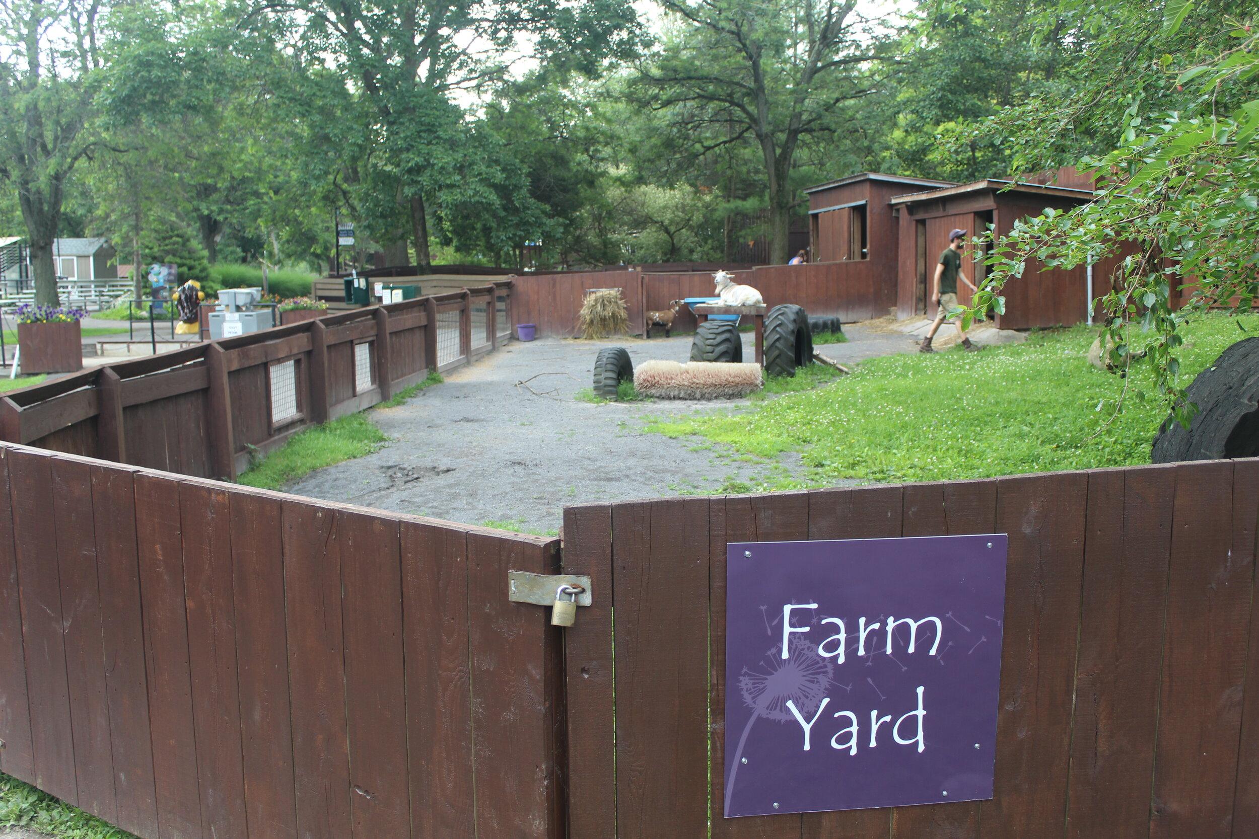 Typ Farmyard