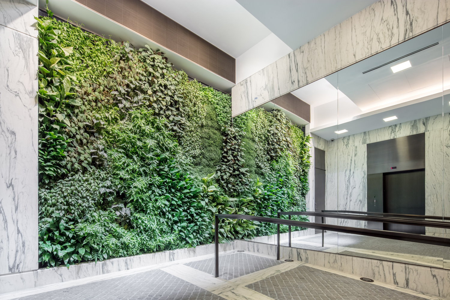 A luxury residential building's lobby area with a large living green wall beside the elevators. MEP by 2L Engineering.