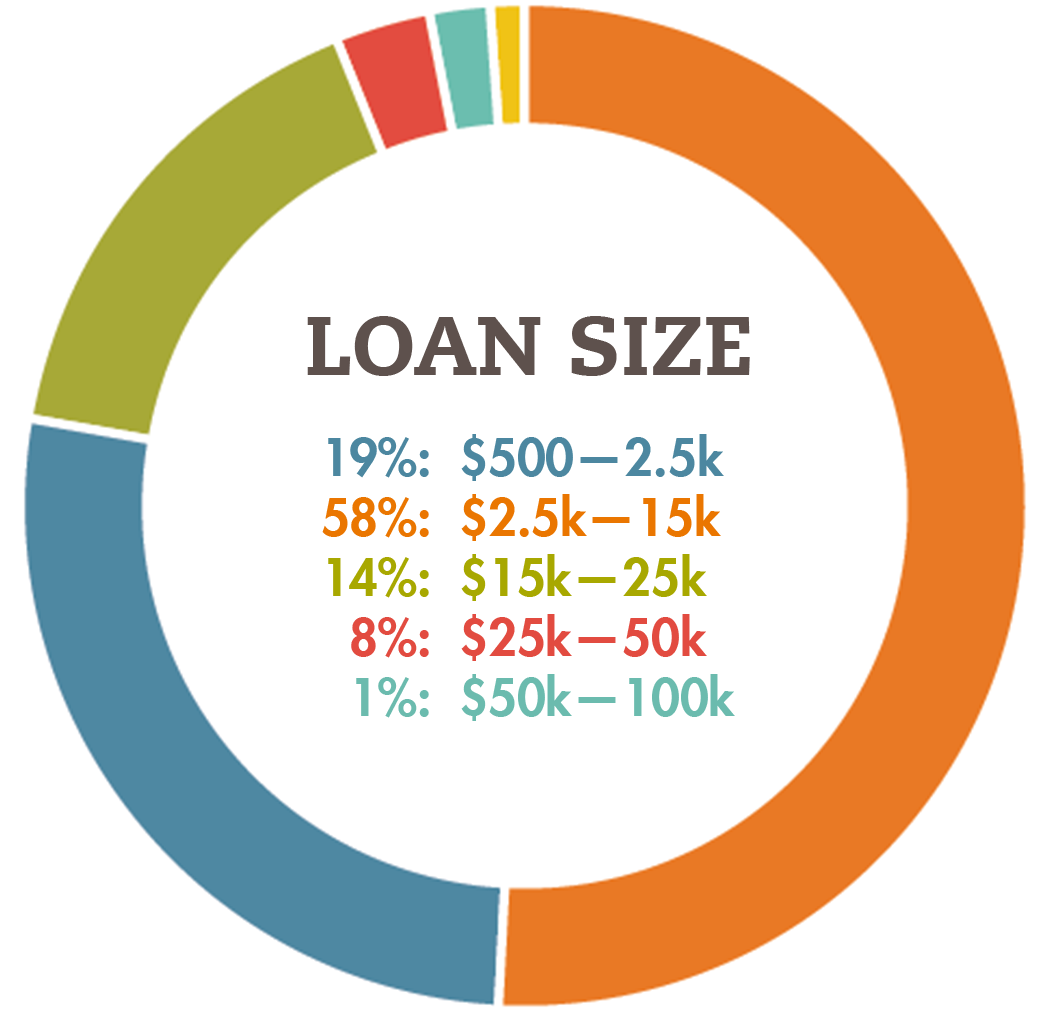Loan Size FINAL.png