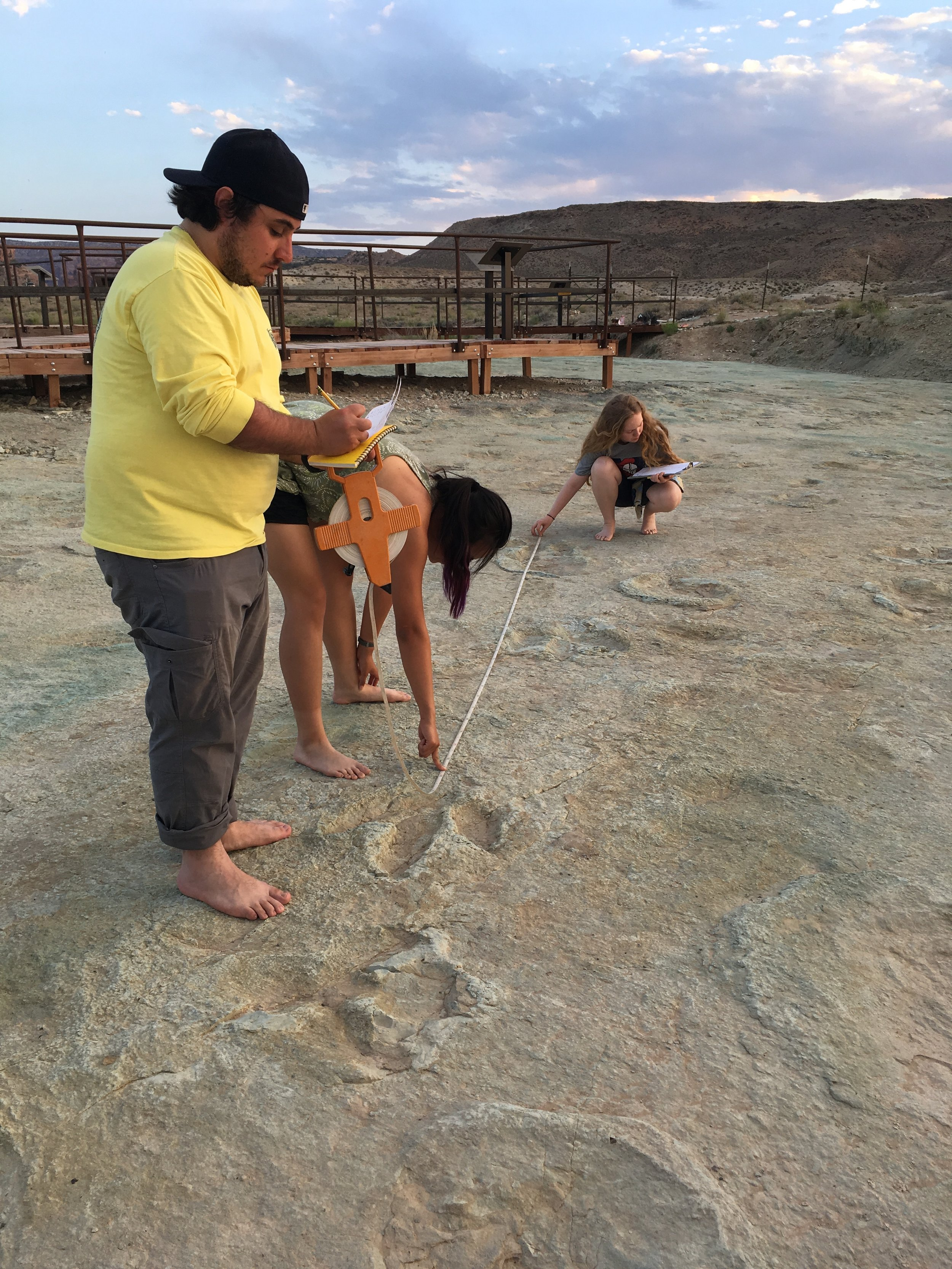 estimating dinosaur speed from footprints during summer field course