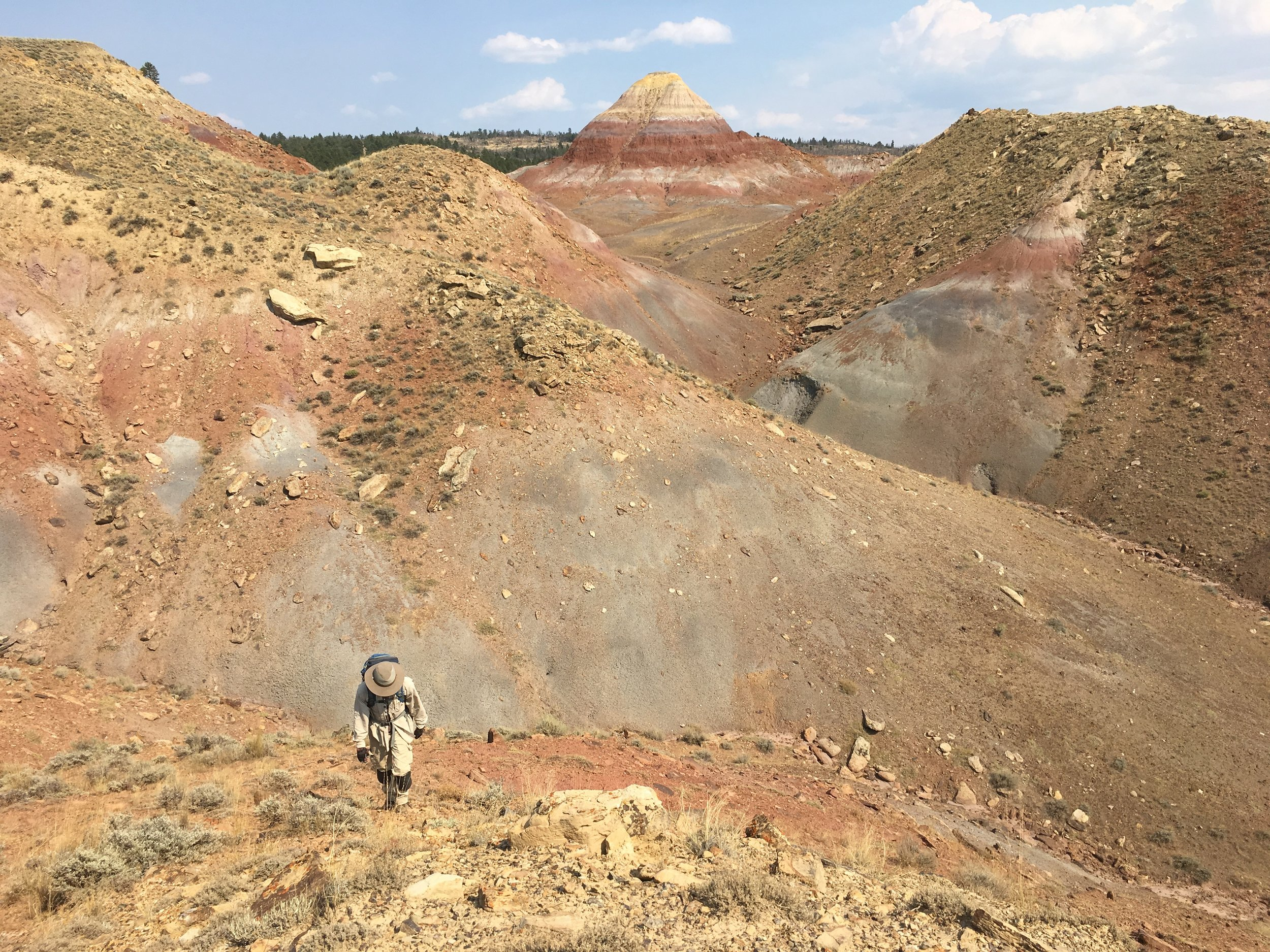 prospecting for fossils in Montana
