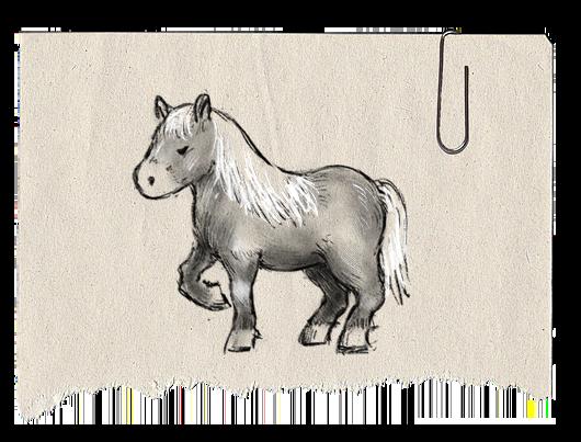 pony_sprite.png