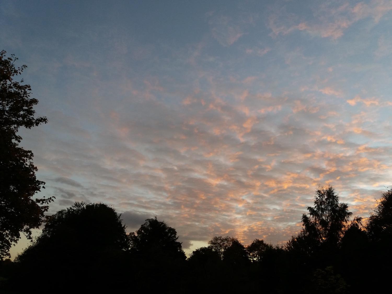 Evening Sky.jpg
