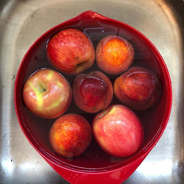 Annoyed by pesky fruit flies. Here's a trick to prevent them and stay organized. Wash fruit immediately when you get home from the grocery store to clean off any eggs that might be on it. Store washed fruit in a clear container in the refrigerator. This not only keeps fruit flies away from it but your family will love having fresh washed fruit to grab on the go.  #shelfspaceorganizing #professionalorganizer #annapolisorganizer #refrigeratororganization #refrigeratorbins #fruitorganization