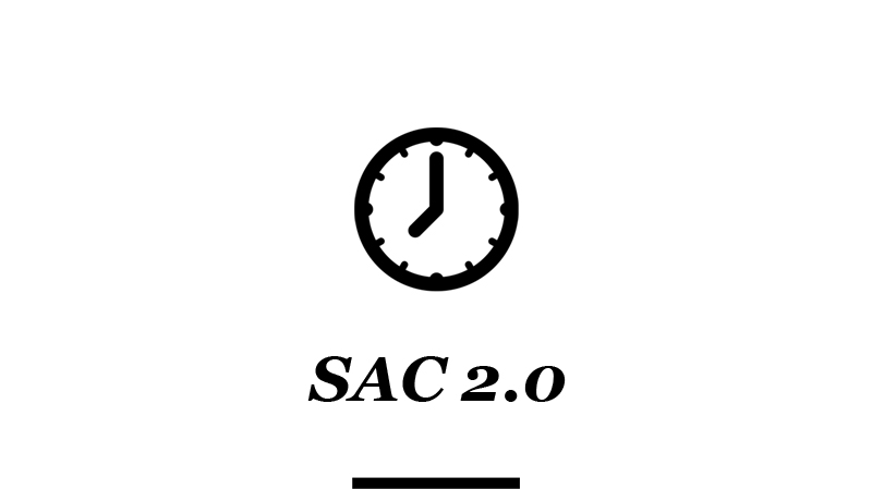 Bluu Agencia Midias Sociais_0003_SAC 2.0.jpg
