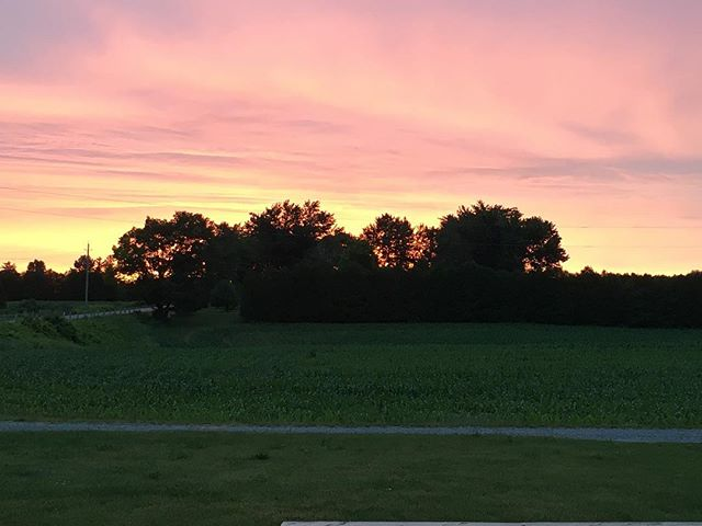 Good morning Sunshine!  #sunrise #norfolkcounty #earlyriser #cornfield #vintageadulting