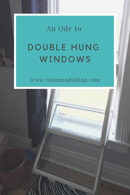 Ode to Double Windows IMG.png