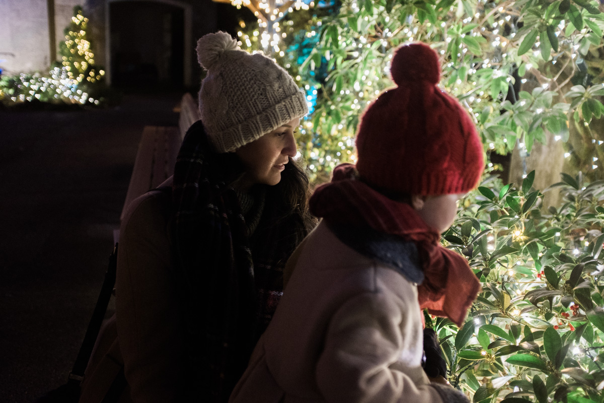 Portland in December | The Whitefeather Journal