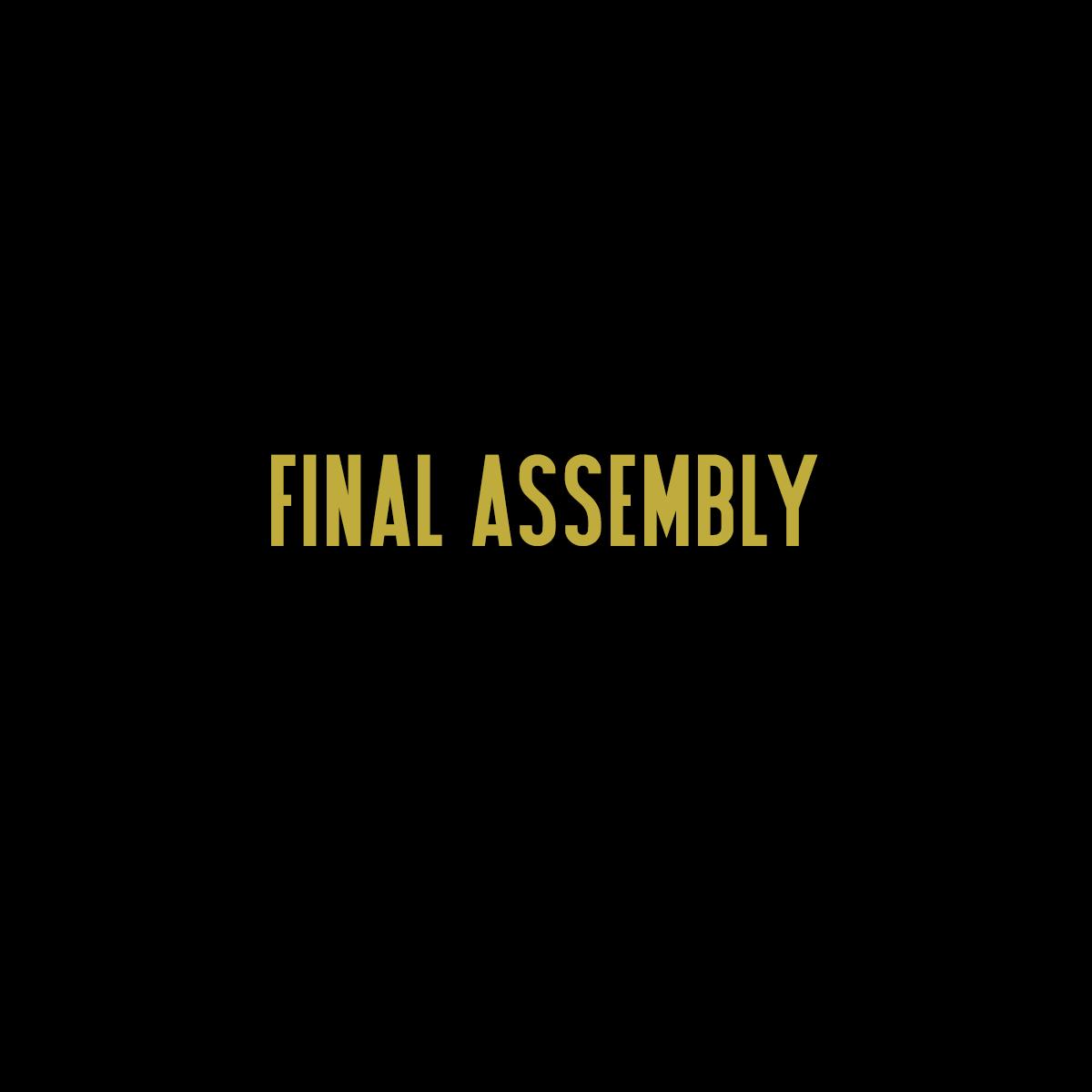 Final Assembly.jpg