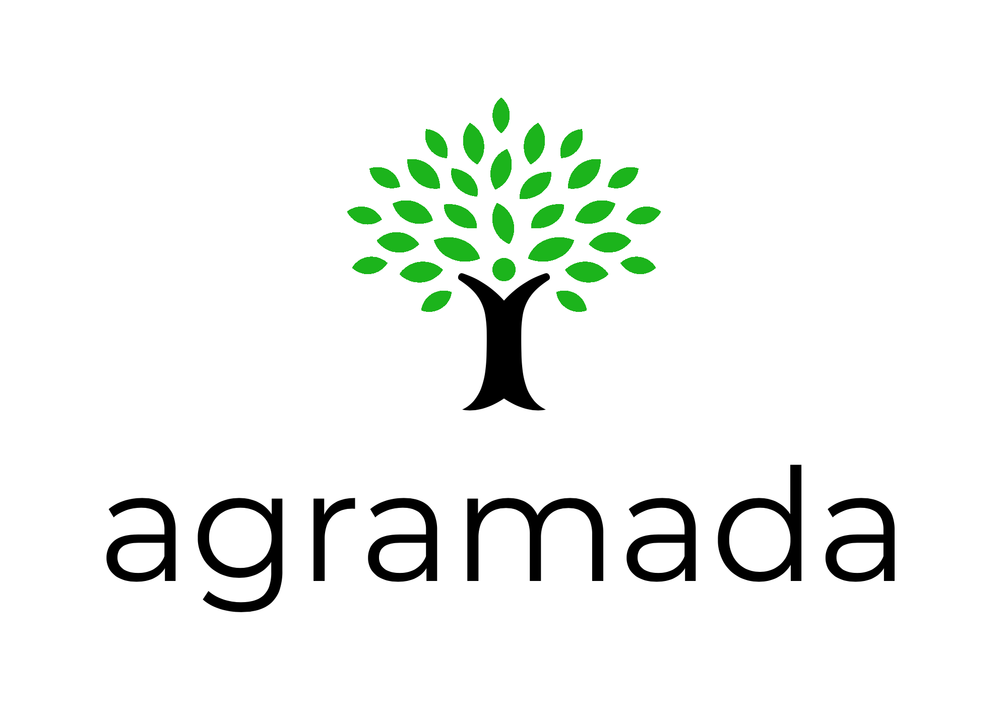 Logo - Agramada Full Resolution - Green .png