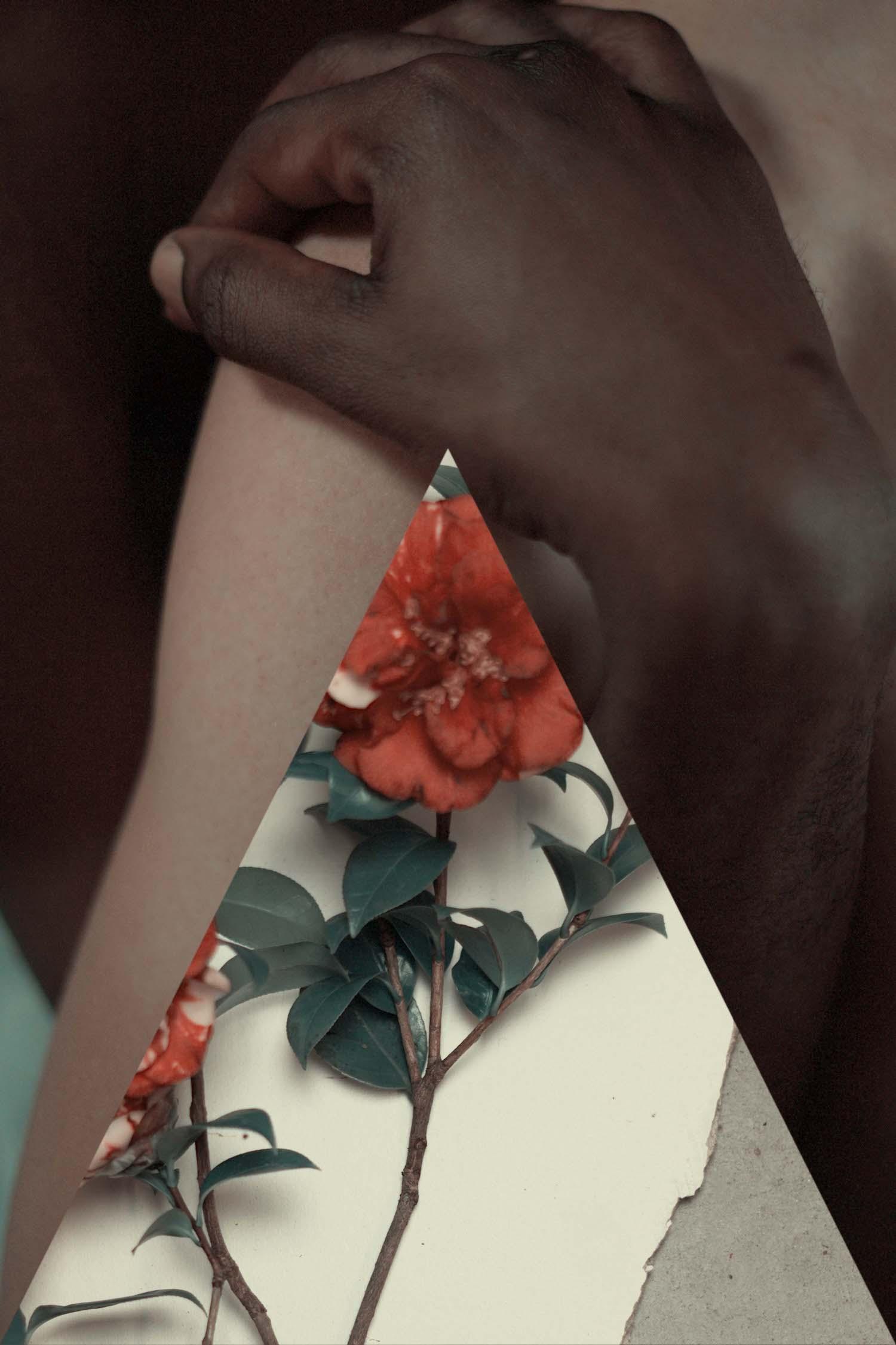 triangleflower.jpeg