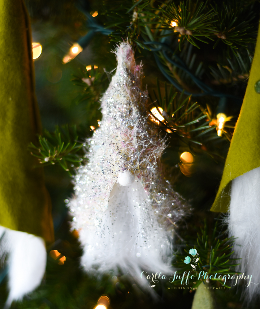 Christmas Craft Ideas and Gifts in Sarasota - Carlla Juffo Photography