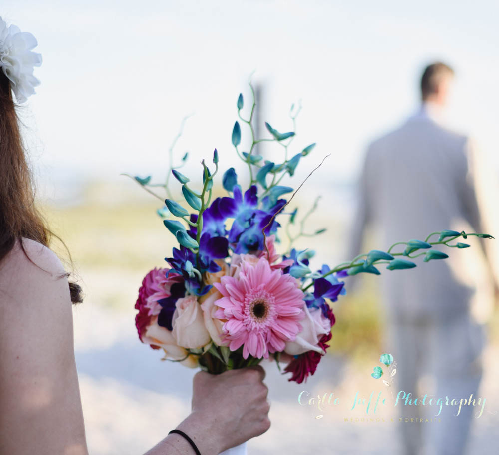Sarasota Affordable Weddings and Events - Wedding Officiant and Photographer included
