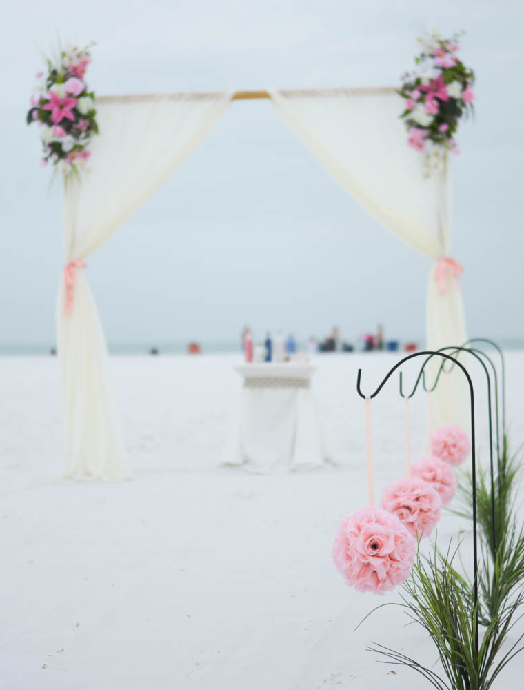 Sarasota Photographer - Carlla Juffo Photography (1 of 1).jpg