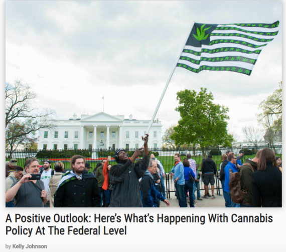 http://bigbudsmag.com/cannabis-leaders-politicians-advocate-for-fair-treatment/
