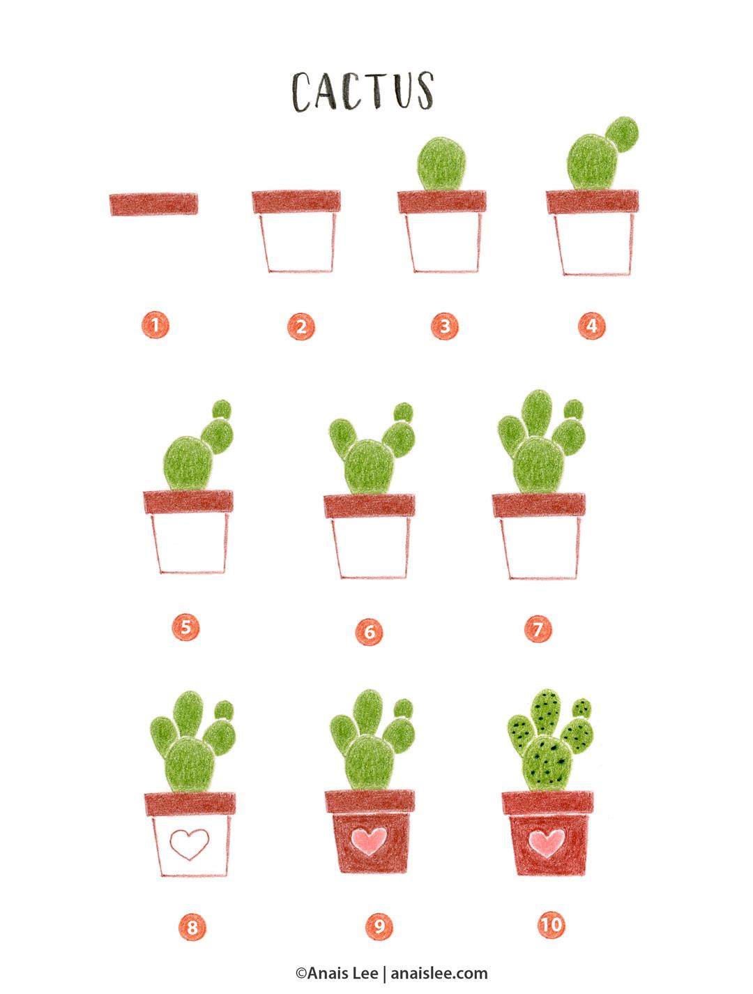 18001_cactus.jpg