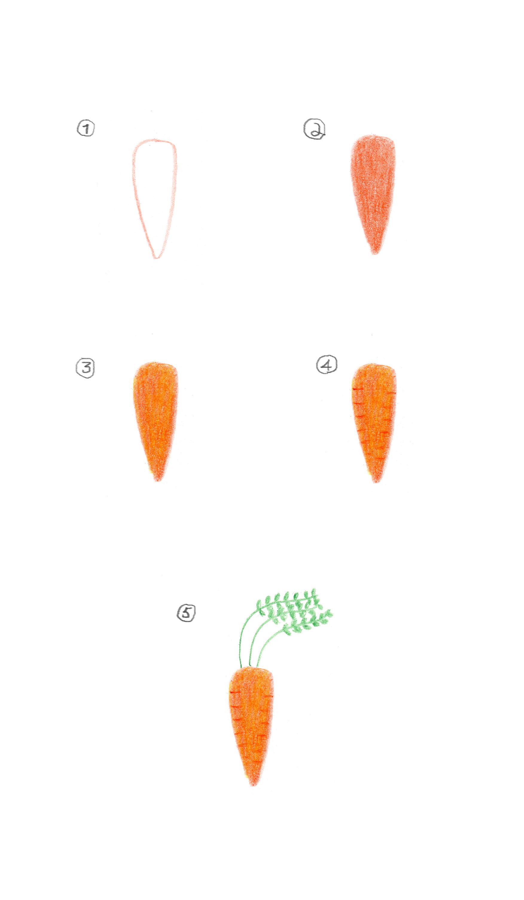 carrot_steps.jpg