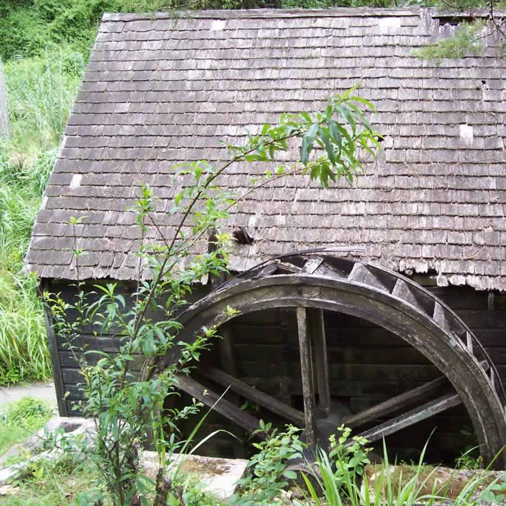 Water-wheel-at-Clydesdale-Estate-(1)=square.jpg