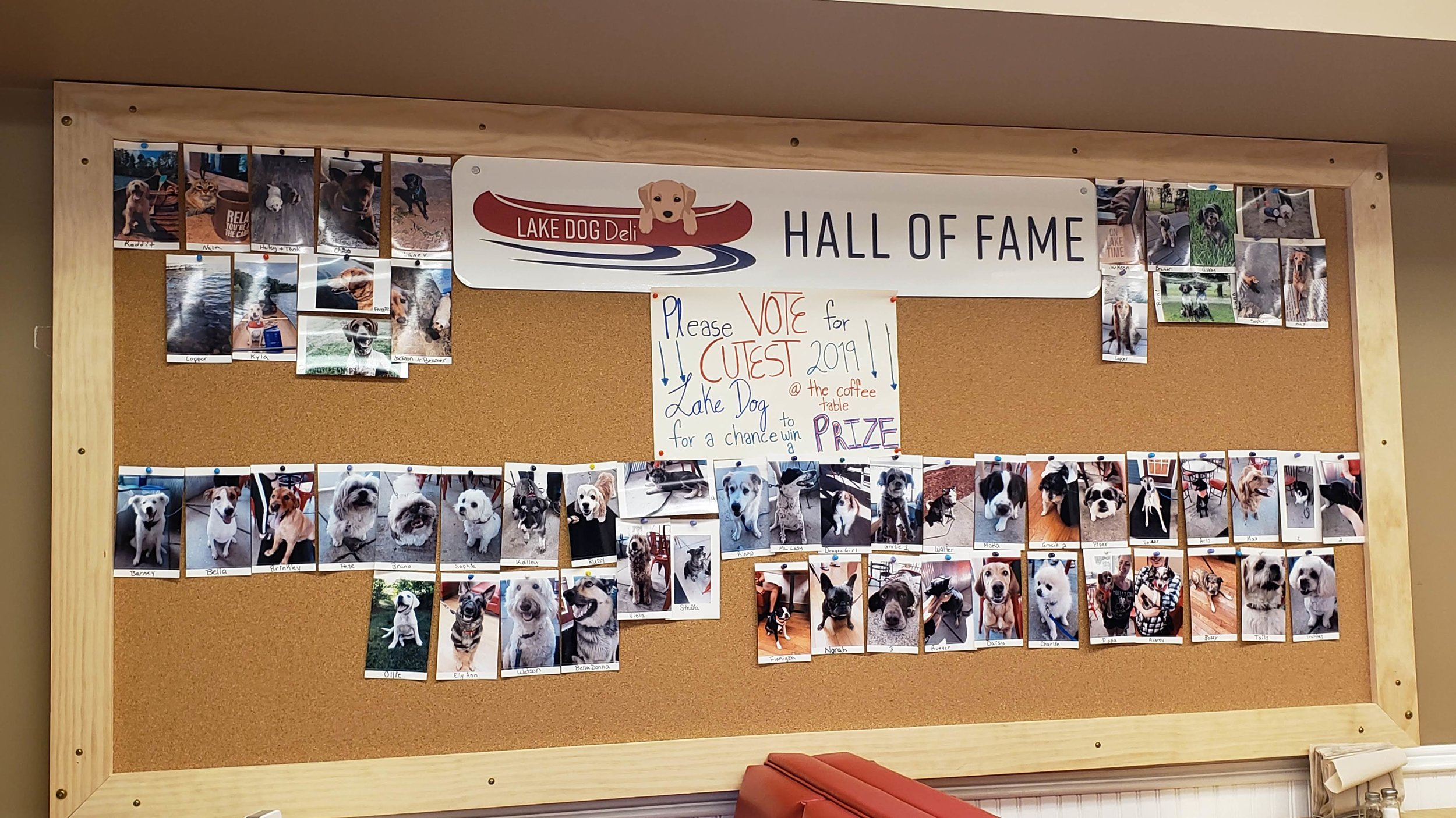 "A fun ""Hall of Fame"" contest, where customers dog were photographed and voted on by the public, was a fun activity this summer."