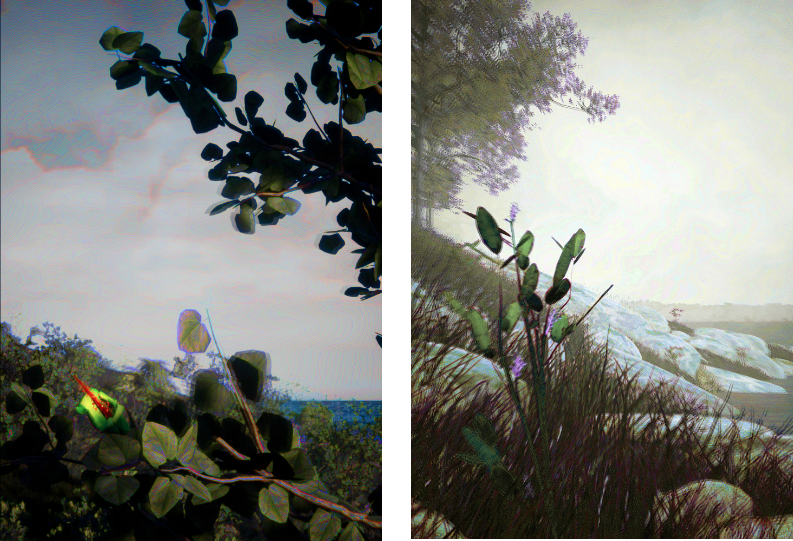 Resurrecting the Sublime:  digital reconstruction of the extinct  Hibiscadelphus wilderianus  Rock on the southern slopes of Mount Haleakala in 1912, Maui, Hawaii (left) and  Orbexilum stipulatum  in its lost habitat of Rock Island on the Ohio River, Kentucky in 1881 (right) ©Alexandra Daisy Ginsberg