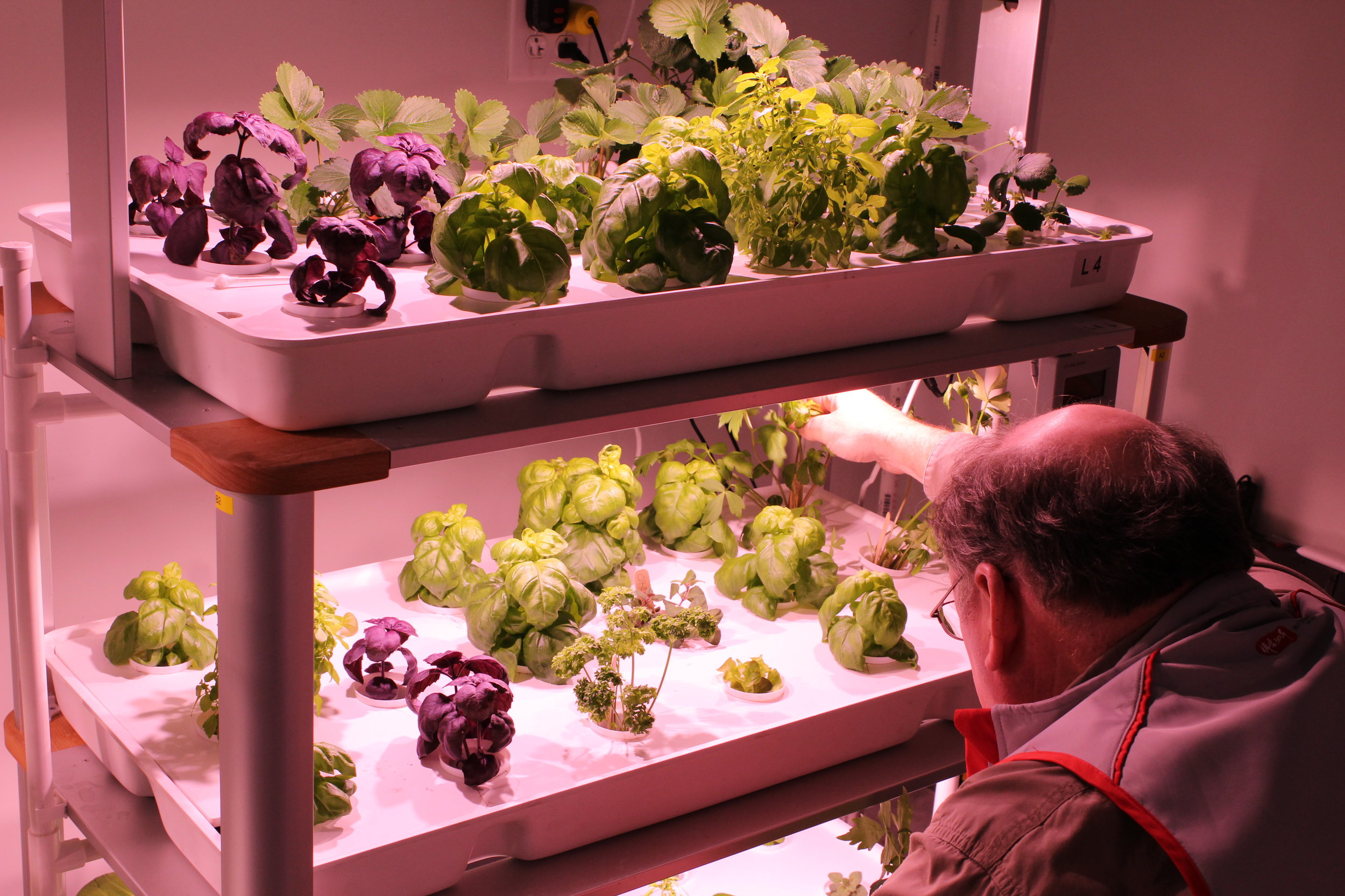 Home or Small Business Hydroponic System — HYVE™ Indoor Farming