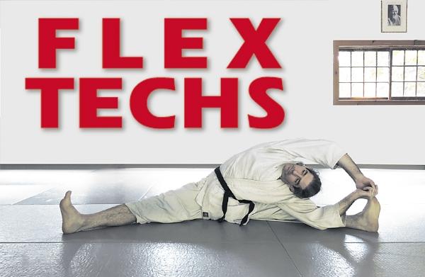 FlexWEB.jpg
