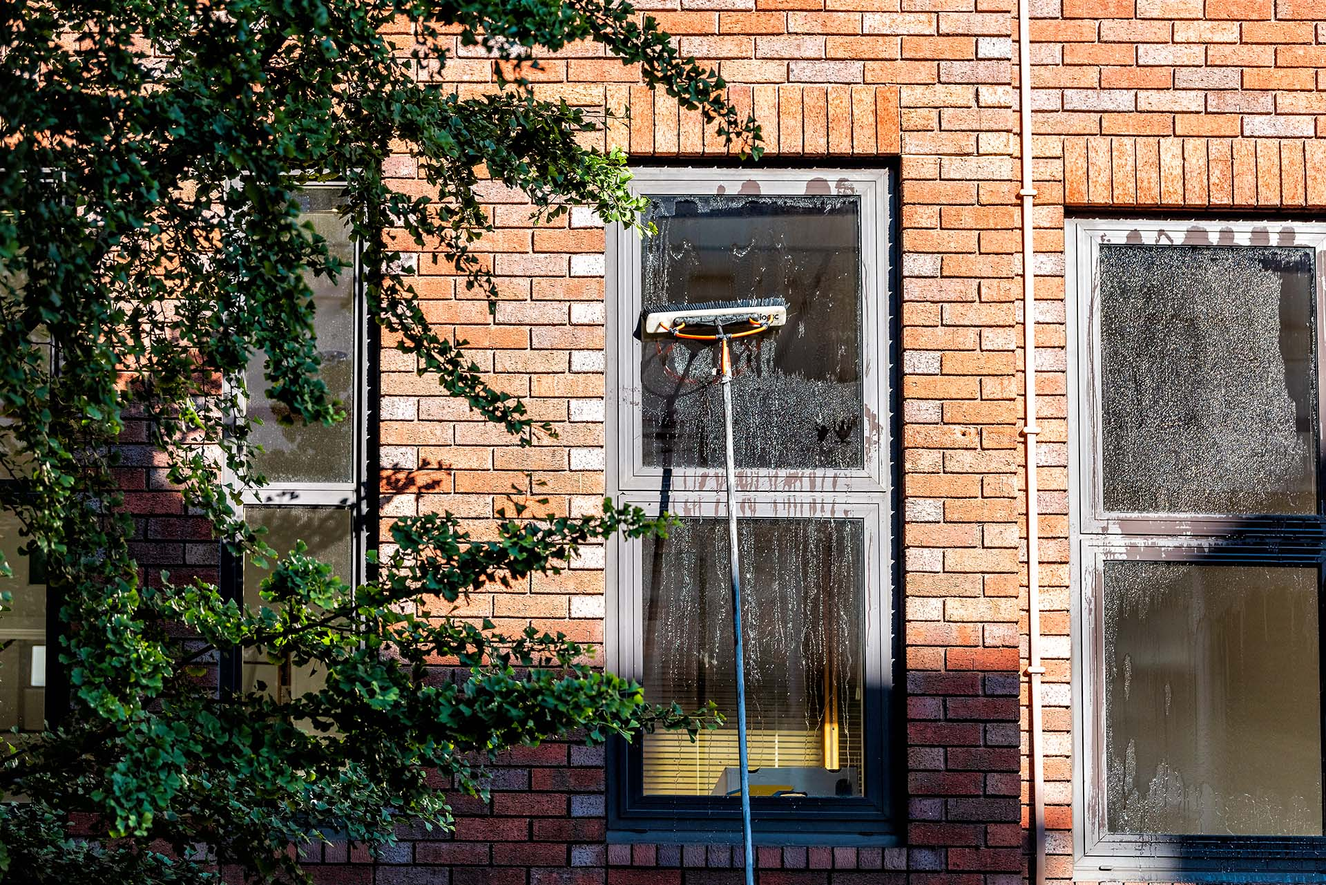 home-pro-painting-residential-window-cleaning.jpg
