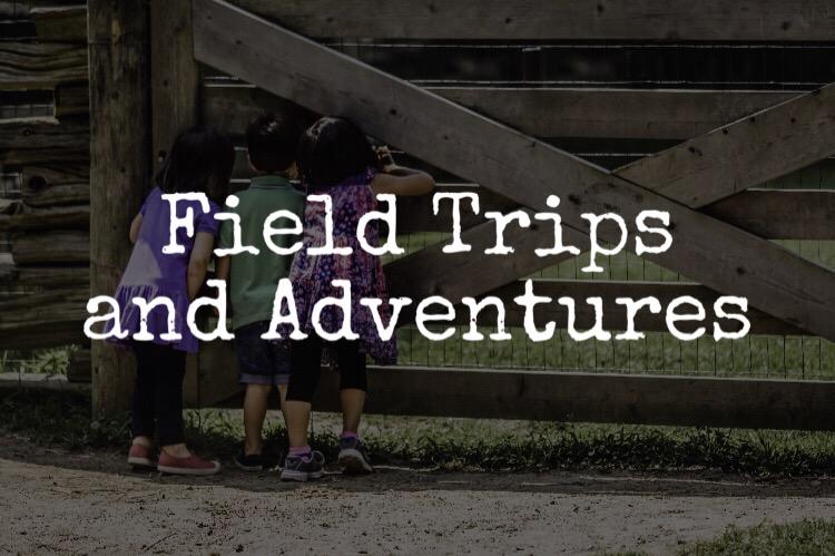 Field Trips Tile HB.JPG