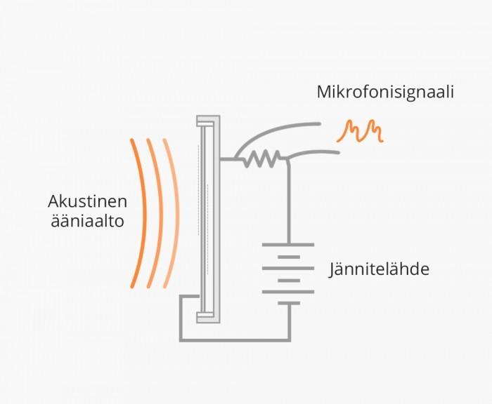 Mikrofonit-Kondensaattorimikrofonin_rakenne.jpg