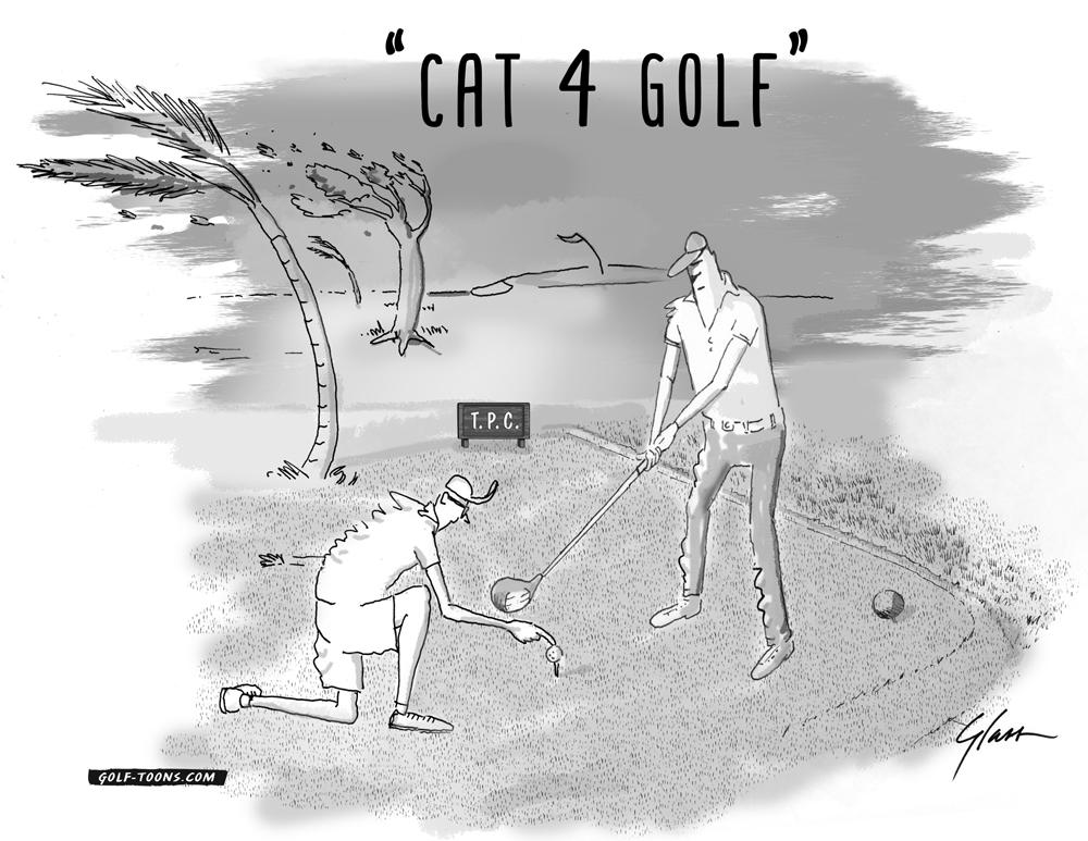 Cat-4-Golf.jpg