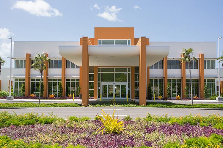 omt-site-hospitals-cayman-5.jpg