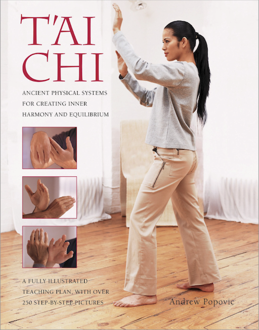 tai chi book for site.png