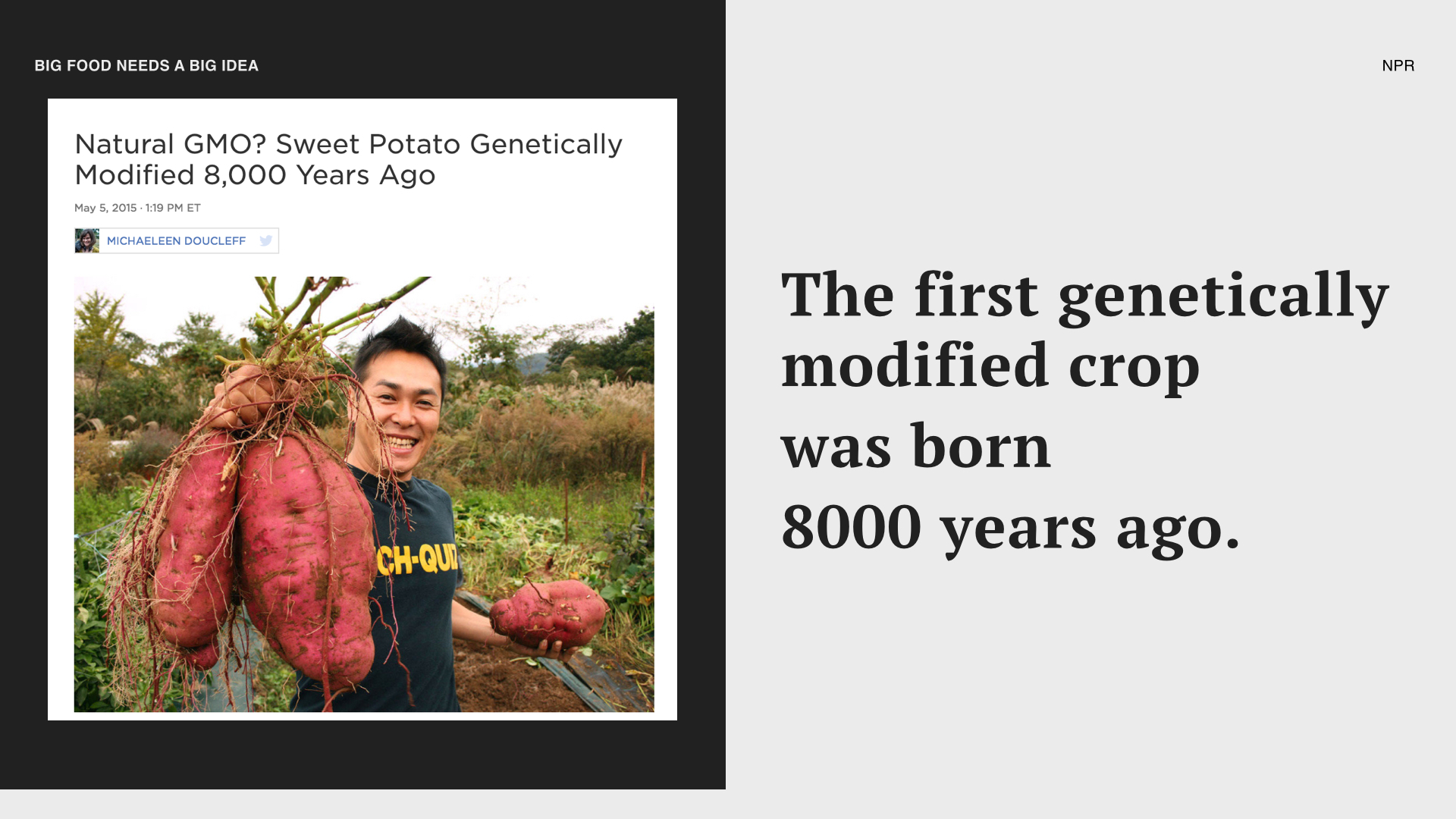 Did you know it wasn't a mega-corporation, who created the first genetically modified crop? 8,000 years ago nature was the engineer, allowing a new root to form from a particular formula of soil and bacteria. And the result is sweet potatoes all around the world.