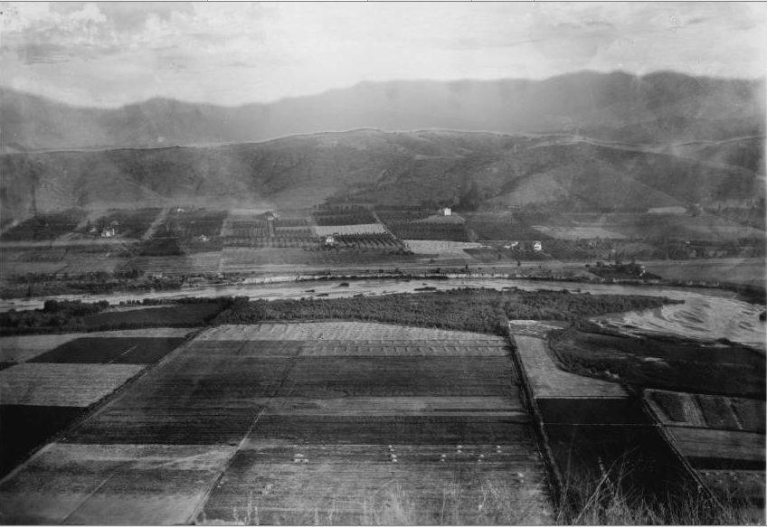 3. Farmland along the Los Angeles River, somewhere near Tropico