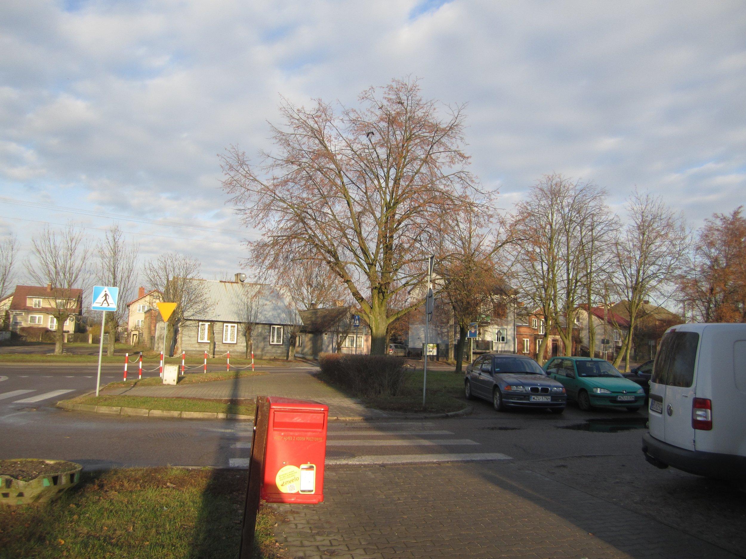 Zuromin street.jpg
