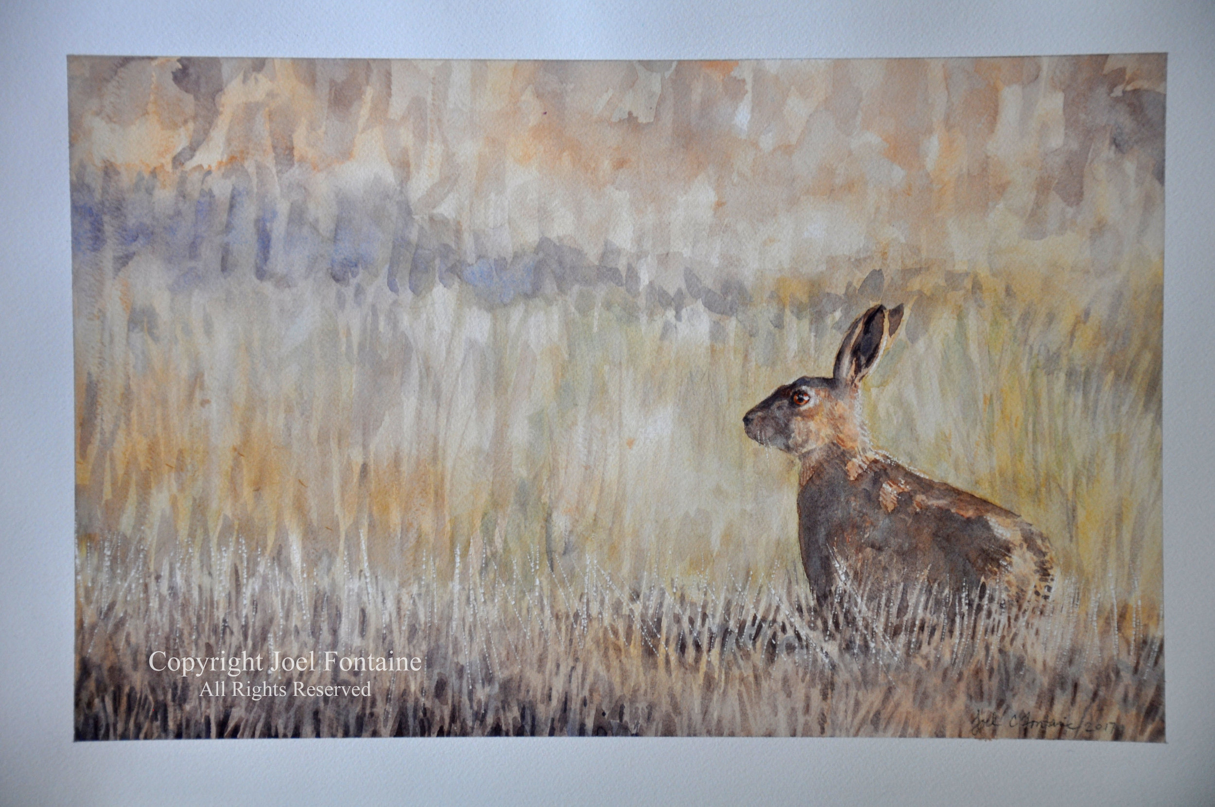Afternoon Hare