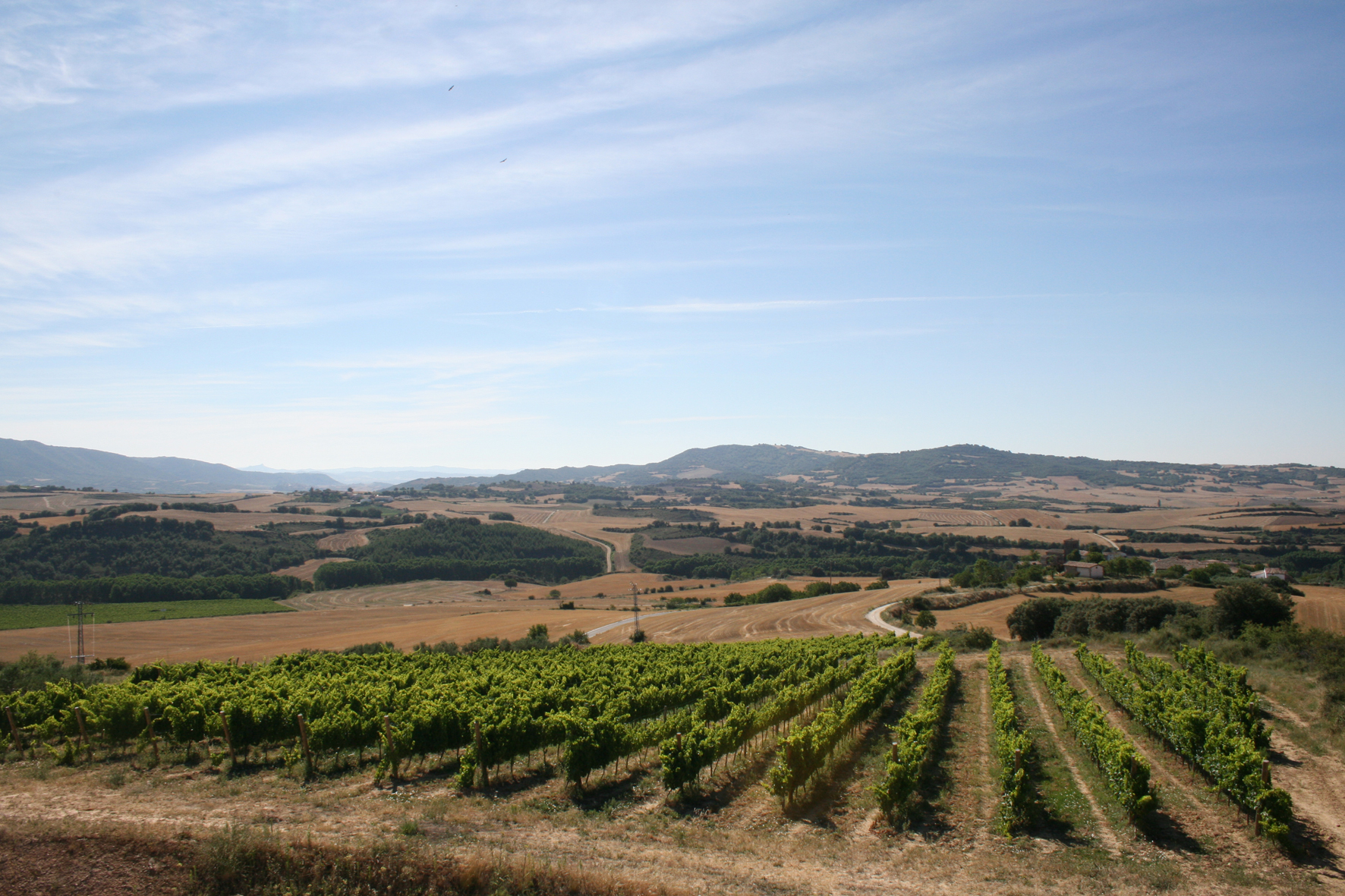 Bodegas Aroa is one of the winemakers in Navarra that is pushing innovation and a unique identity