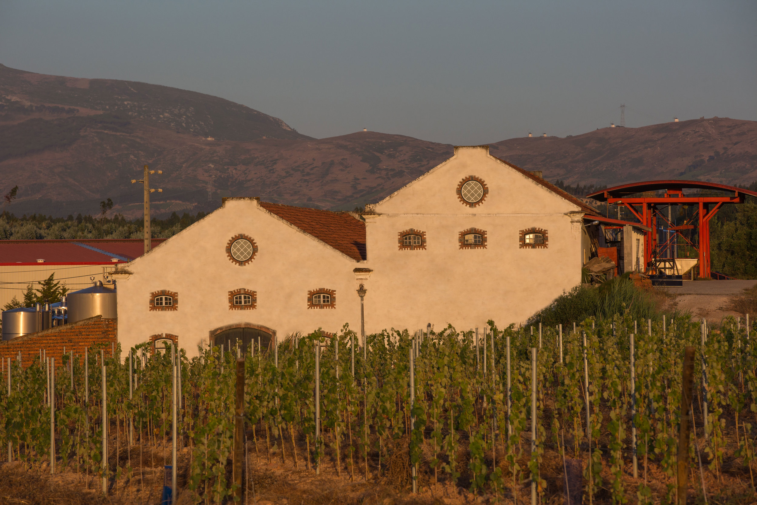Quinta de S. Francisco. You can just make out the traditional white wine mills on the crest of the hills