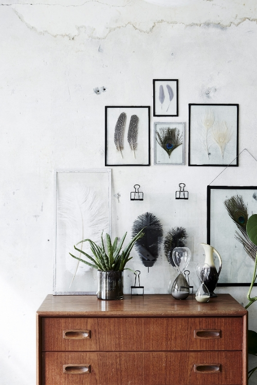 Feather Art Displays