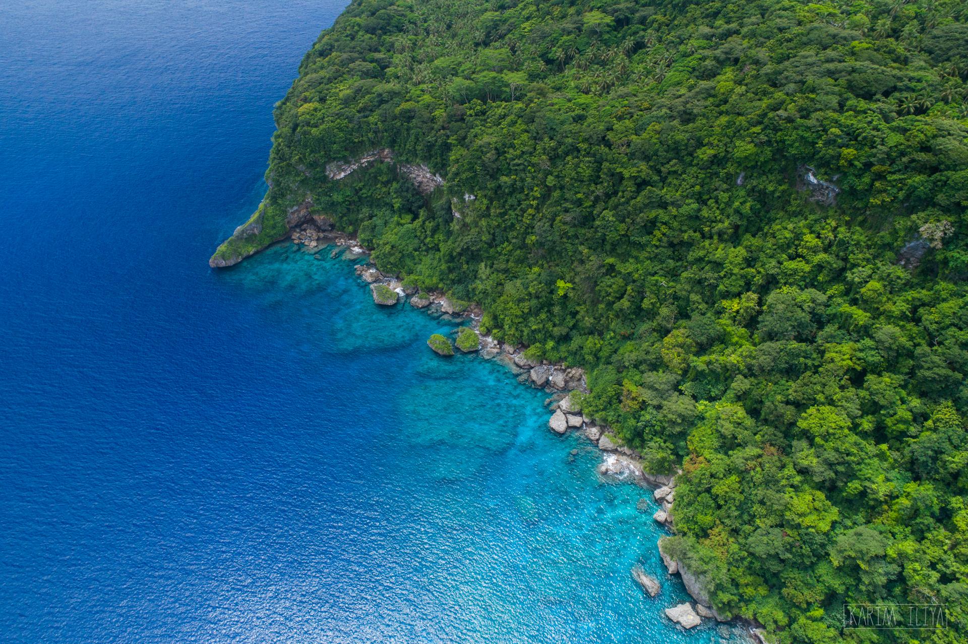 island-tropics-trees-planet-earth.jpg