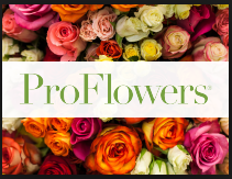 proflowers.png