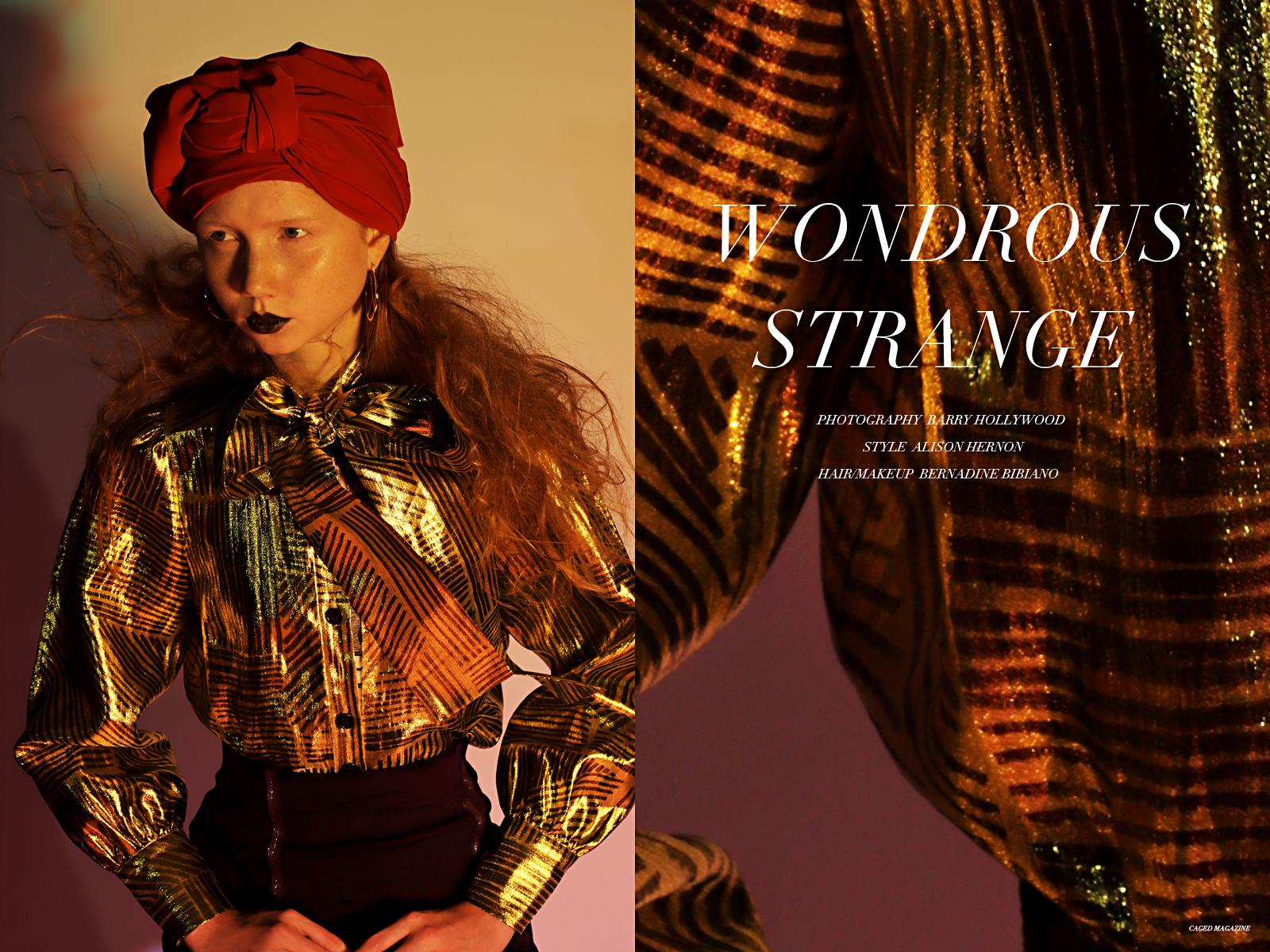 Top by  Rebecca Minkoff,  Skirt by  Marie Saint Pierre,  Headwrap is  Stylist's Own