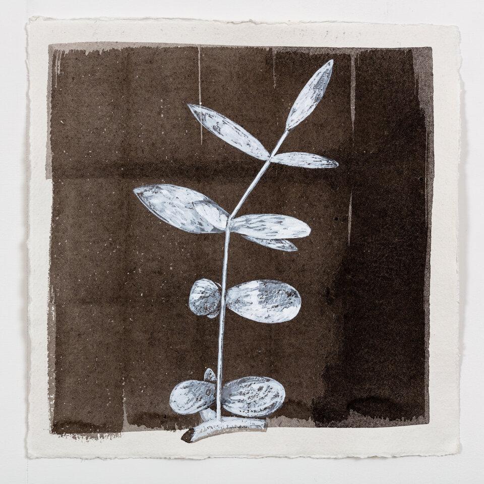 JG_2018_No. 24 (Reed Flower, 2007)_A.jpg
